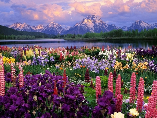 Grand Teton National Park, Mount Moran