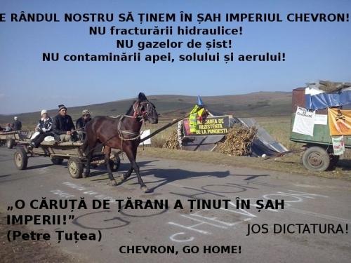 caruta de tarani pungesti CHEVRON GO HOME jos dictatura